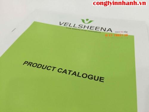 In ấn nhanh chóng cuốn Catalogue cho khách hàng, in nhanh lấy liền
